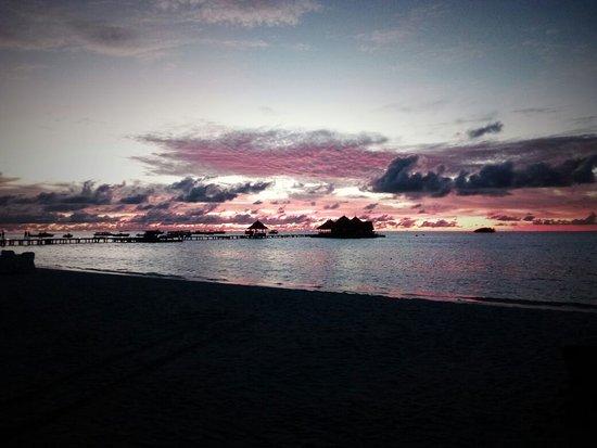 Thulusdhoo Island: IMG-20170316-WA0001_large.jpg