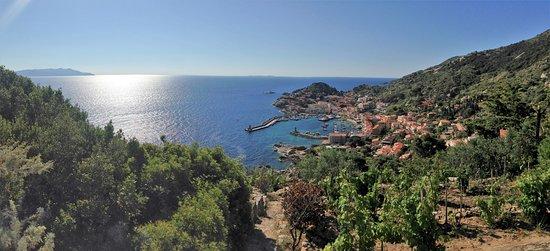 Giglio Island: Panaromafoto - vom Hügel fotografiert