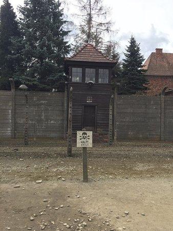 Krakow Tours : photo7.jpg