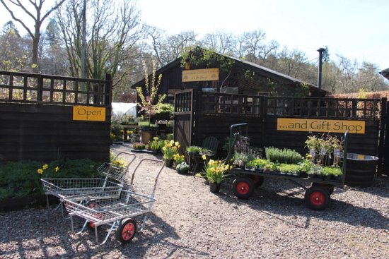 Riverside Garden Centre & Art Gallery