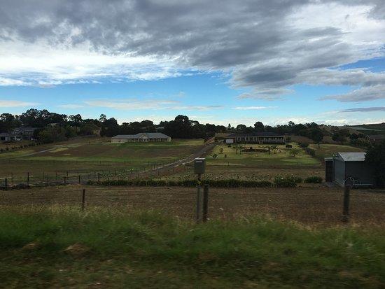 예링, 오스트레일리아: photo1.jpg