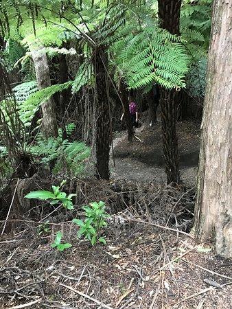 Wairarapa, นิวซีแลนด์: photo0.jpg