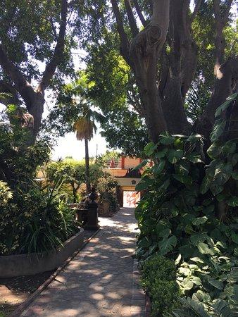 Casa Sauza: photo2.jpg