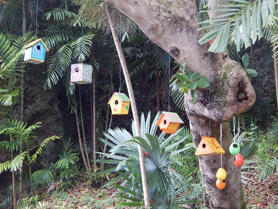 Saint George Parish, Μπαρμπάντος: Some of the colourful birdhouses