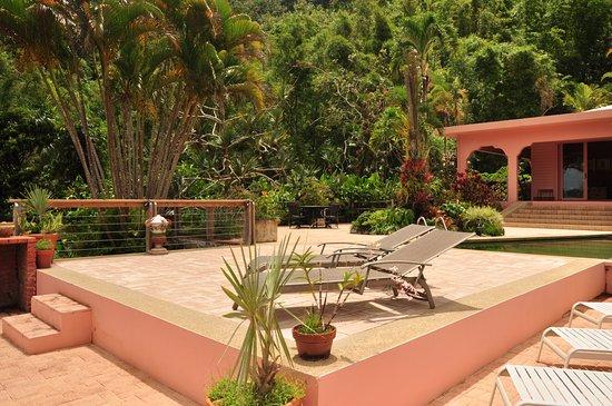 Casa Flamboyant: Blick auf Haupthaus eingebettet in Dschungellandschaft