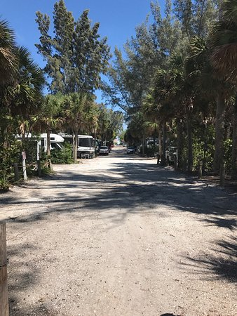 Turtle Beach Campground Picture Of