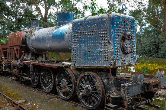Healesville, Australia: old style steamy