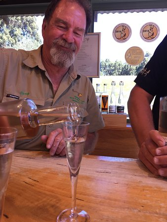 Bushtucker River & Wine Tours: Some pics on bush tucker tour  Great day