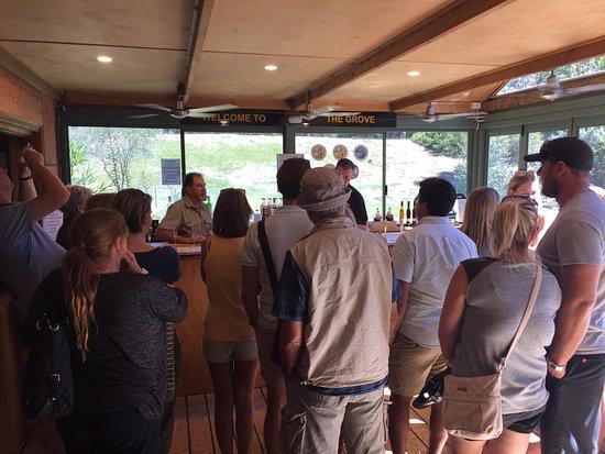 Bushtucker River & Wine Tours: Some pics on bush tucker tour  Great day