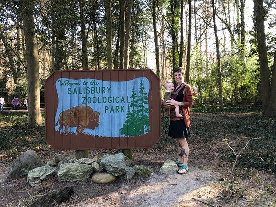 写真Salisbury Zoo枚