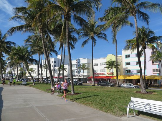 The Colony Hotel: The park and beach are directly in front of the hotel.