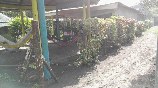Cabinas El Icaco Tortuguero: IMG-20170302-WA0003_large.jpg