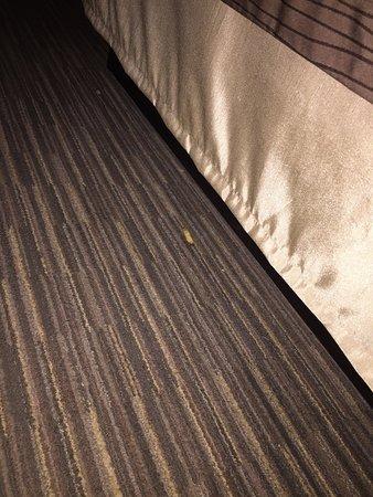 Comfort Inn Schererville: photo2.jpg