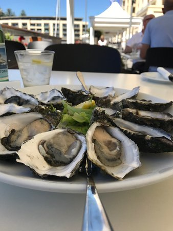 Glenelg, Australia: Outstanding fresh sea food and excellent service .. would highly recommend coming here for a mea