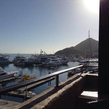 Tesoro Los Cabos: photo2.jpg