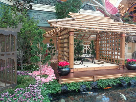 Japanese Spring 2017 Display Picture Of Conservatory Botanical Gardens At Bellagio Las