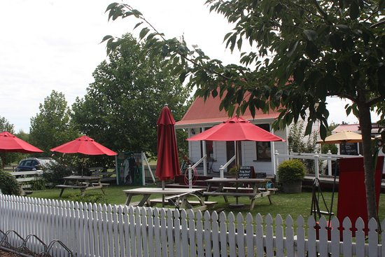 Havelock North, Nieuw-Zeeland: Relaxed atmosphere