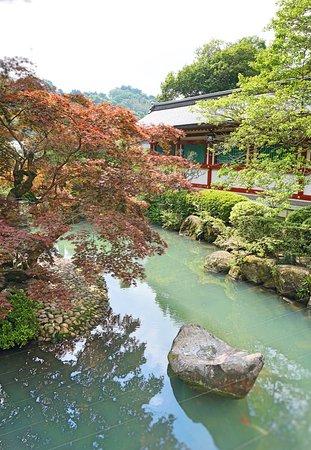 Kashima صورة فوتوغرافية