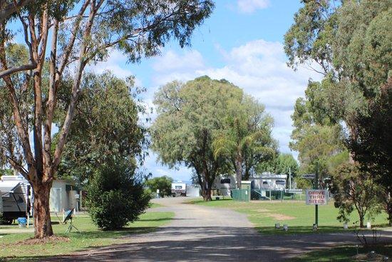Warwick, Австралия: photo0.jpg