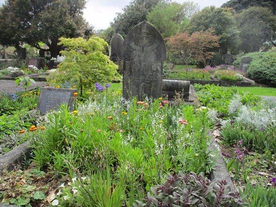 New Plymouth, Nya Zeeland: Te Henui cemetery