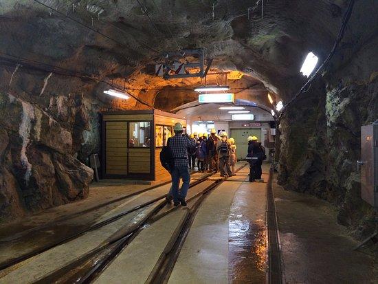 Kurobe, Япония: 黒部峡谷パノラマ展望ツアー