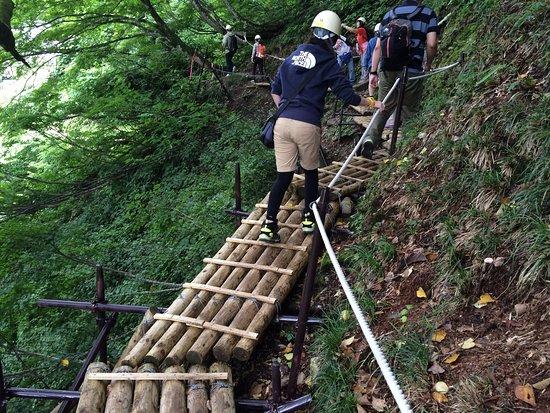 Kurobe, Japón: 黒部峡谷パノラマ展望ツアー