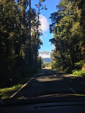 Westland National Park (Te Wahipounamu), New Zealand: approach road