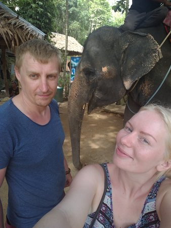 Kok Chang Safari Elephant Trekking: IMG_20170319_145147_large.jpg
