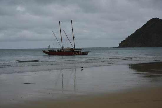 Anaura Bay Picture