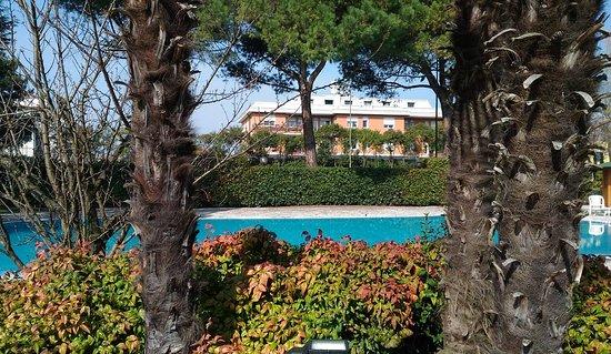 Hotel Bristol Buja: IMG_20170317_084335_809_large.jpg
