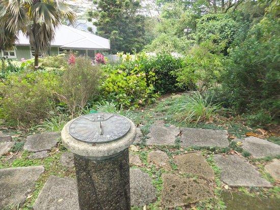 Lyon Arboretum : photo5.jpg