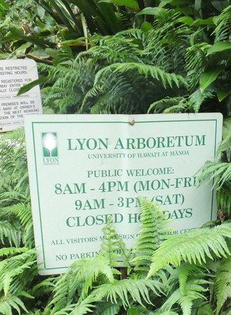 Lyon Arboretum : photo6.jpg