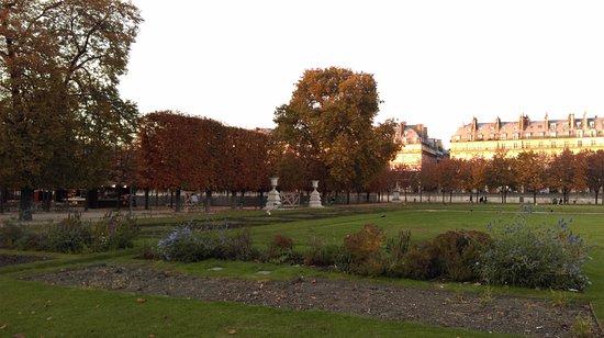 Jardin des tuileries 2016 obr zek for Jardin des tuileries 2016