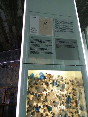 Museo Nacional de Ciencia y Tecnología: panel expositivo