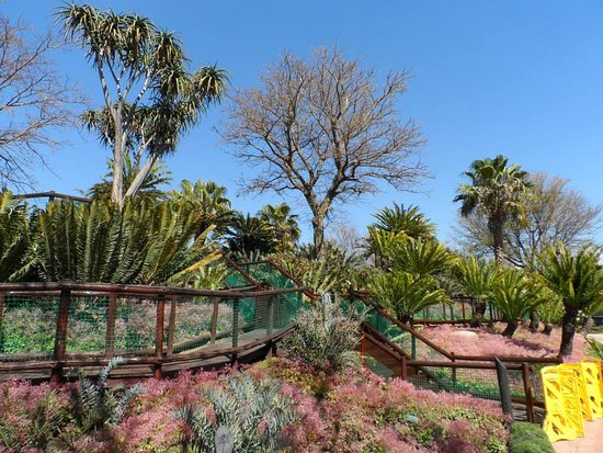 Fourways, South Africa: Il parco naturale