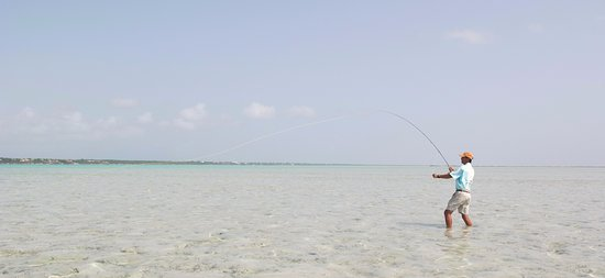 Solo on the flats of Bottle Creek North Caicos