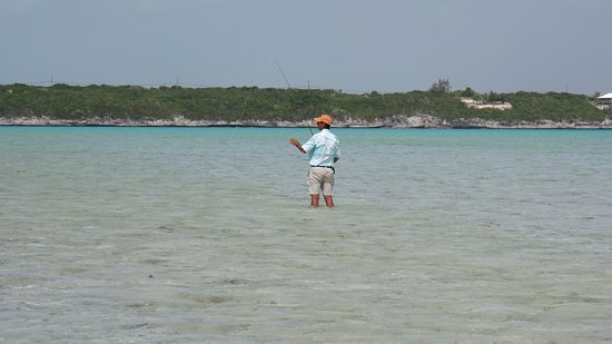 North Caicos: Waiting for the bonefish to come....