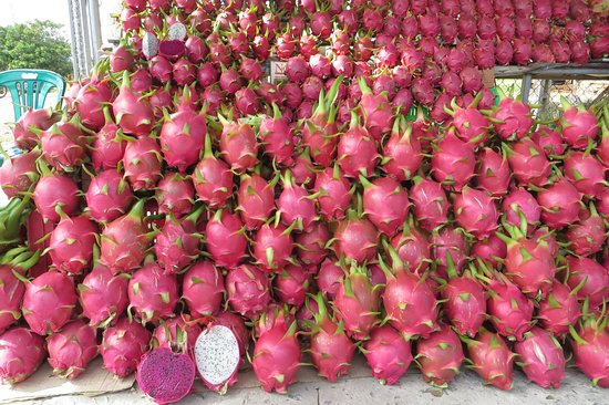 Delicious and ripe dragon fruits for sale  - Picture of Tour