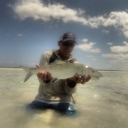 Another school size bonefish on the flats of North Caicos