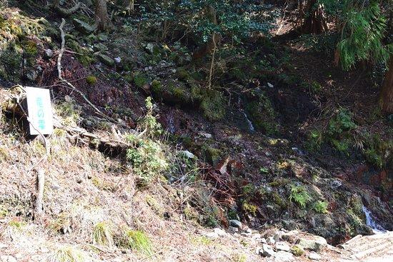 Inabe, Japan: 途中にある湧水(竜の雫)