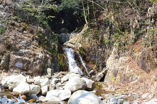Inabe, Japan: 丸太橋そば(白滝)