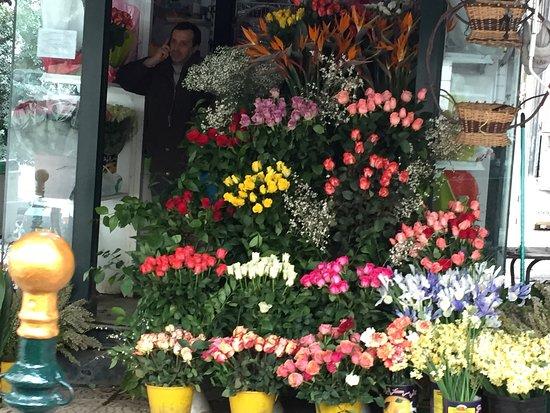 Algiers, Algeria: La Rue Didouche Mourad