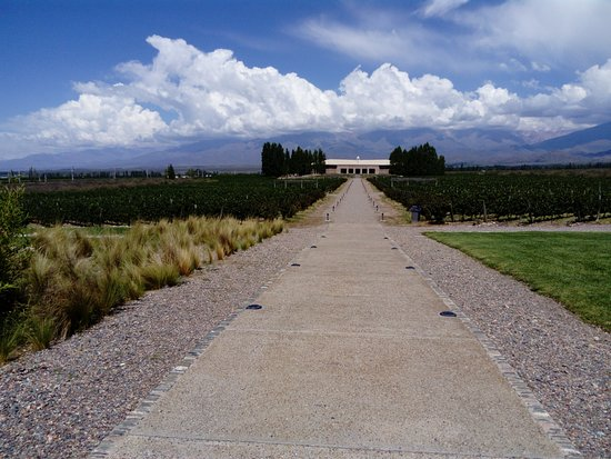 Tunuyan, Argentina: view to the main winery building