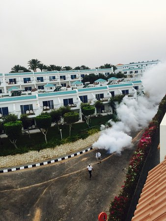 Xperience Sea Breeze Resort: photo0.jpg