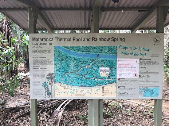 Mataranka Thermal Pool March 2017 Picture Of Mataranka Thermal Pool Elsey National Park