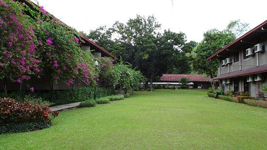 Montebello Villa Hotel : 中庭
