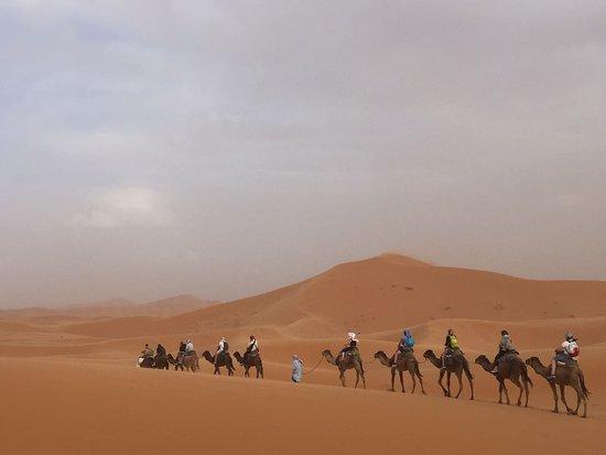 Merzouga, Marruecos: Un ora di cammello per raggiungere le tende dove abbiamo pernottato.
