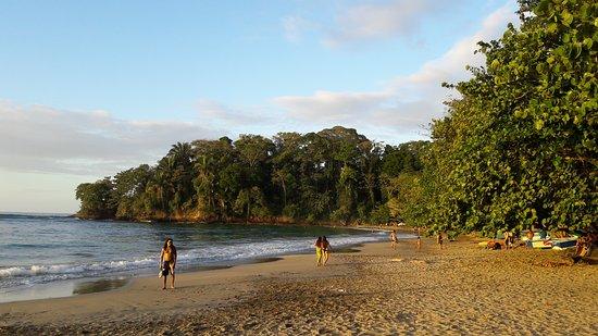Punta Uva, Costa Rica: 20170318_172242_large.jpg