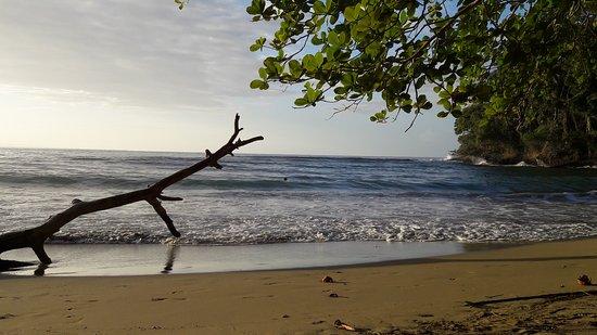 Punta Uva, Costa Rica: 20170318_170838_large.jpg