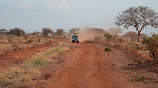 Mimi na Wewe...in Africa!: safari